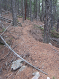 Screen Shot 2012-11-05 at 12.30.09 PM